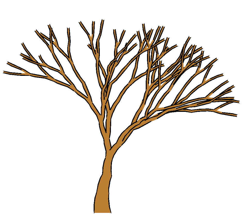 Free fig trees coloring pages